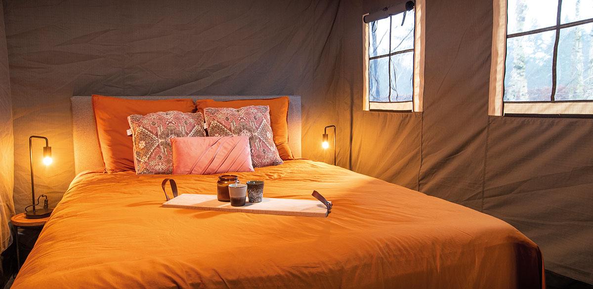 black-shack-bed